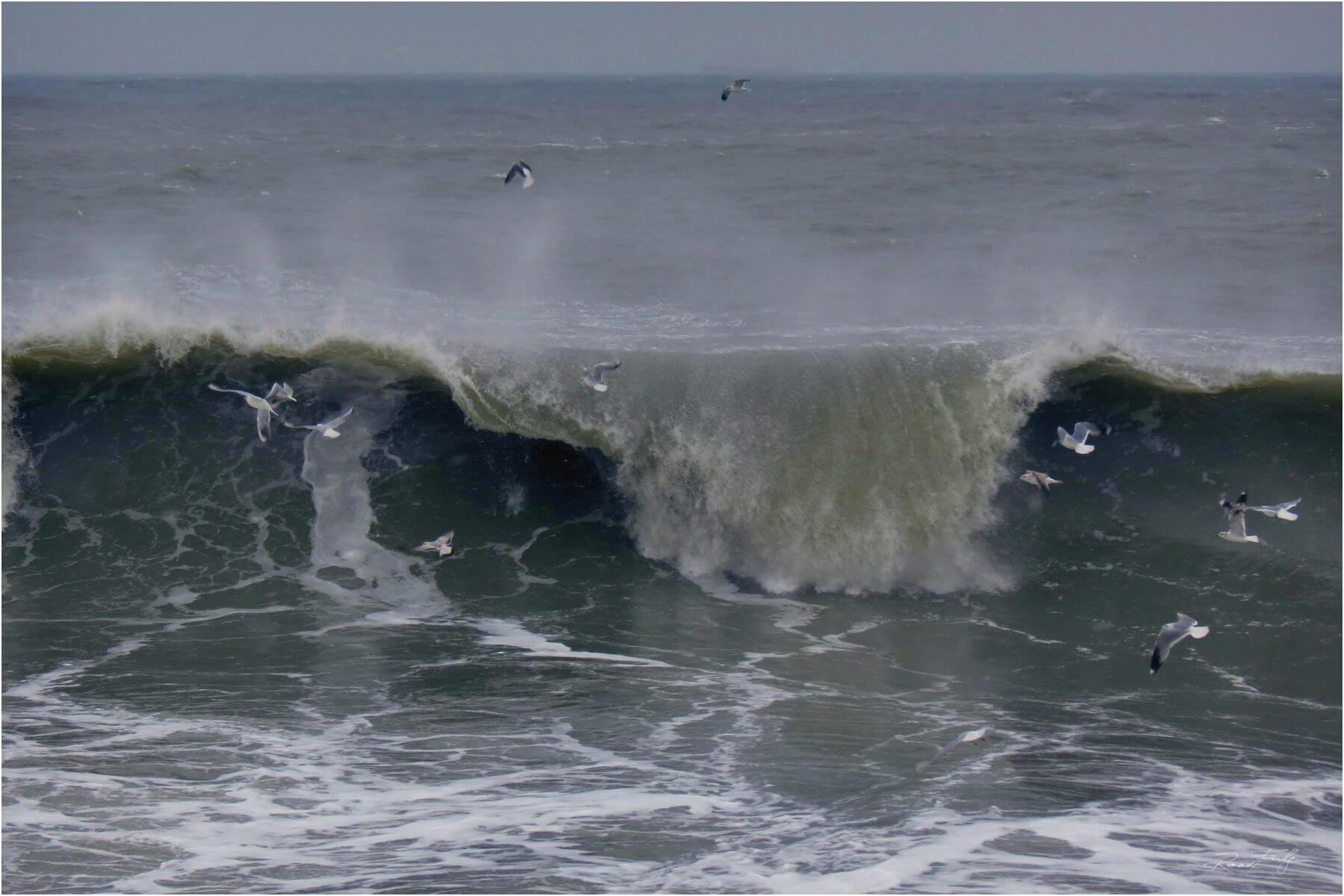 Surfing in Romania pe valurile din Constanta – poza realizata de Radu Fulga