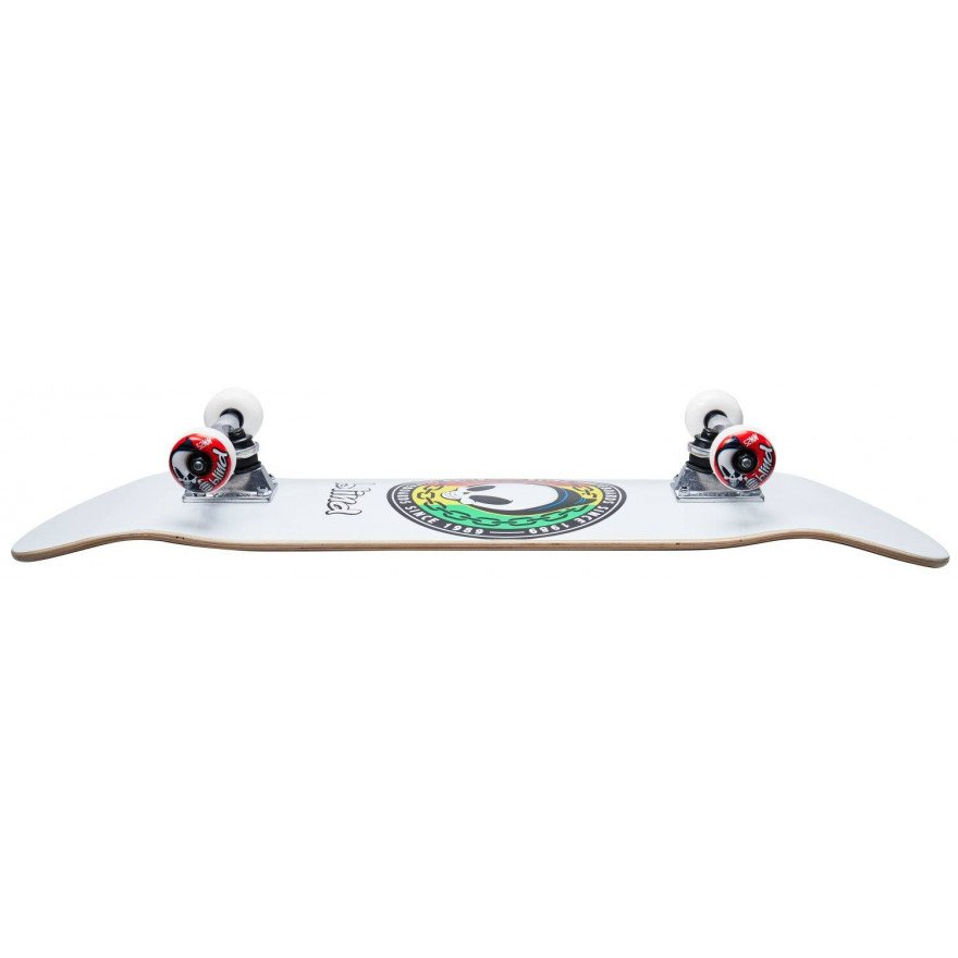 Skateboard complet Blind Rasta Reaper
